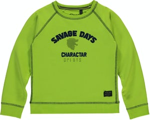 TINOR_LIME Kleding Sweaters