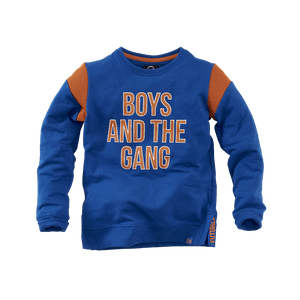DENNIS_BRILLIANTBLUE Kleding Sweaters